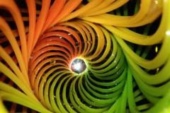 Simetria-Sumergida-Maria-Campos-Perez-4oB